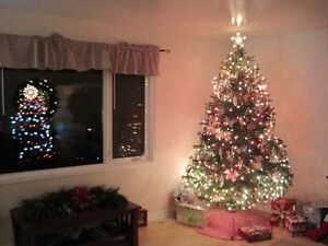 Wanted 6-7 ft prelight CHRISTMAS TREE