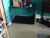 Large dog crate $40 OBO