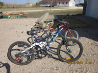 2 BIKES FOR SALE.
