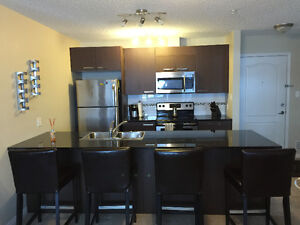 FURNISHED 2 Bed, 2 Bath, 2 Parking Condo in SW Edmonton