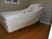 Single Sealy orthopedic bed in super mint condition