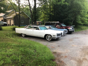 A beautiful example of a 1966 Cadillac