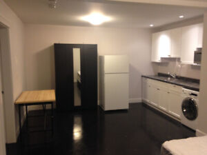 One Large Bedroom Studio with Separate Entrance