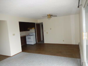 2 Bedroom 1 Bathroom Apartment in Downtown Fort Sask for Rent!