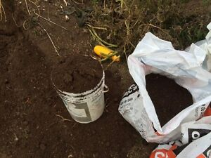 4 year old compost limited supply Kawartha Lakes Peterborough Area image 2