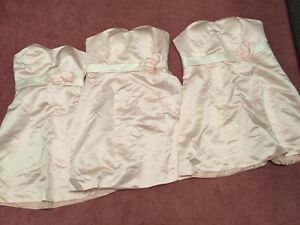Bridesmaid Dresses  X 3 (Never Worn) - One Lot