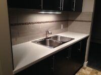 Newly Renovated Two Bedroom Downtown Condo