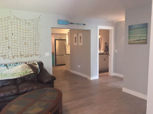 BRAND NEW, Bright, Open & FULLY furnished Basement Suite