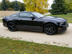 2014 Ford Mustang V6 305 HP Black Wheels FINANCE Priced to Sell