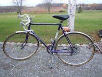 Men's Apollo 10 Speed Bicycle