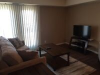 2 Bedroom 2 Bathroom Apartment - Brand New!! - Be the first Tena