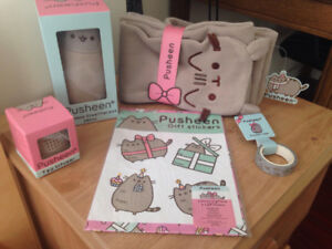 Pusheen items for sale -2016 winter box