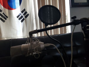 Apex 440 Recording Mic (With stand, cord, and filter)
