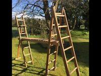 Vintage ladder & platform