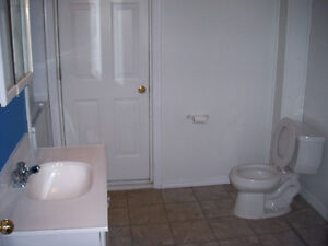 Recently Upgraded 1Bdrm Apartment With Balcony! Nov 1st Kitchener / Waterloo Kitchener Area image 4