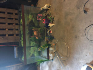 Fish tank with all accessories located london ontario
