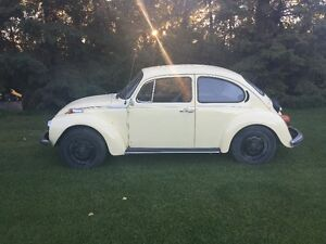 1973 Volkswagen Beetle Coupe (2 door)
