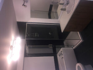 URGENT looking for a FEMALE roommate/ une COLOCATAIRE- February
