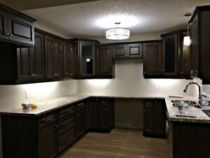 NEW Apartment Build For Rent in Listowel Kitchener / Waterloo Kitchener Area image 5