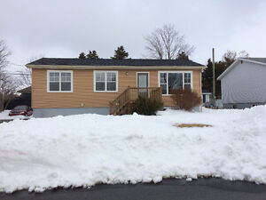 Available November 1, 2016 Three Bedroom House in Mount Pearl