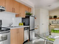 New, modern, 2 bedroom apartment- Available now!