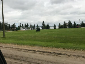 BUCK LAKE LOTS FOR SALE