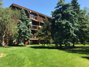 Here's a fantastic condo located in the Vibrant City of Camrose