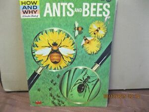 THE HOW AND  WHY WONDER BOOK   ANTS  AND       BEES Oakville / Halton Region Toronto (GTA) image 1