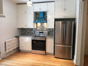 RENOVATED! NDG STUNNING LOWER WITH PARKING!