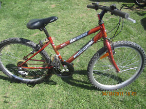 2 BIKE 18 SPEED SUPERCYCLE SC1800