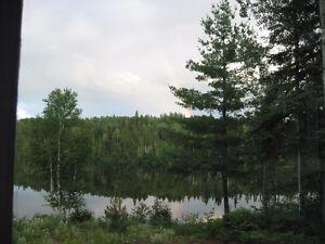 Terrain bord de l'eau avec grande terre à bois derrière.