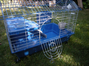 New Guinea pig cage and food