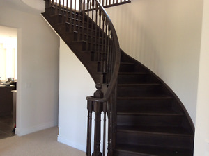 EXecutive home Room near trent, Seneca and 20 min from airport
