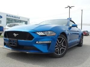 2019 Ford Mustang GT PREMIUM 5.0L V8 400A