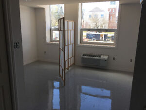 SEVERAL BRAND NEW BACHELOR APARTMENTS AVAILABLE JULY 1