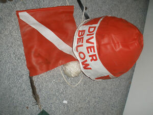 Inflatable dive flag and line