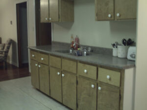 Furnished 2 bedroom apartment ( Central )