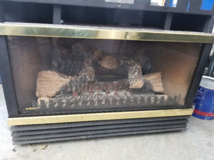 Great condition propane insert and chimney liner!!!