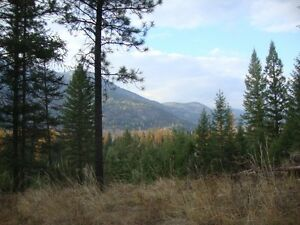 10 acre Secluded Paradise in Kootenays is Yurt-Perfect!!