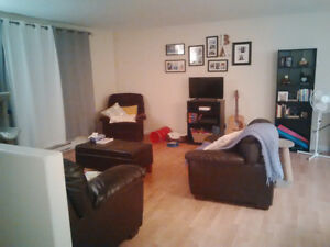 Roommate Wanted - 3 Bedroom Duplex in Moncton North