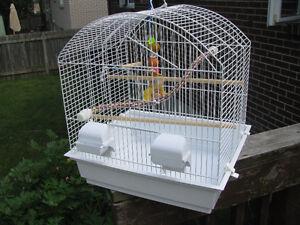 cage pour perroquets