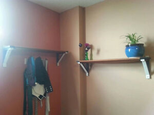 Pair of wall shelves