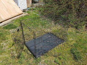 Kennel for large dogs