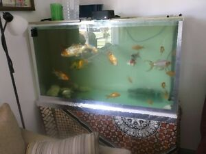 Fish tank with table