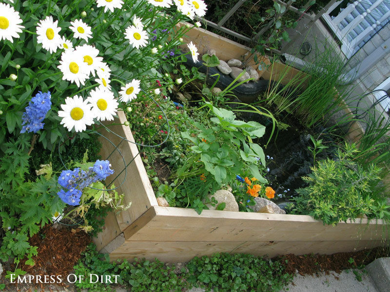 Can't dig or don't want to? Put your pond in a raised bed