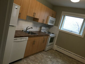 Subletting pet friendly one bedroom for august 15.