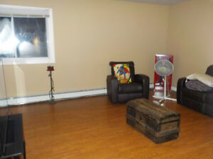 one bedroom apartment for rent in springhill ns
