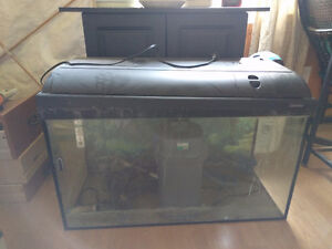 30 gallon fish tank with pump, cabinet stand and accessories