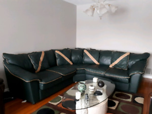 DeBoer's 3 piece sectional leather sofa