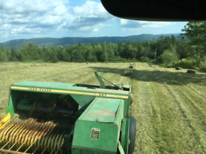 Construction/environmental hay